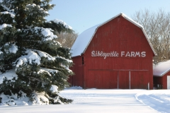 Sibleyville Barn in the Snow