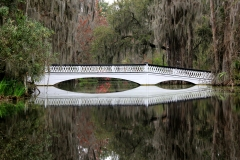 Magnolia Plantation bridge