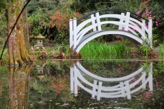 Japanese bridge at Magnolia Plantation