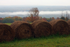 Hay Bales on the hillside