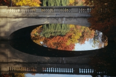 Bridge Reflection in Genesee Valley Park