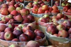 New York State Apples
