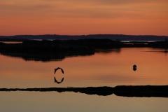 Stonehurst Cove at sunrise