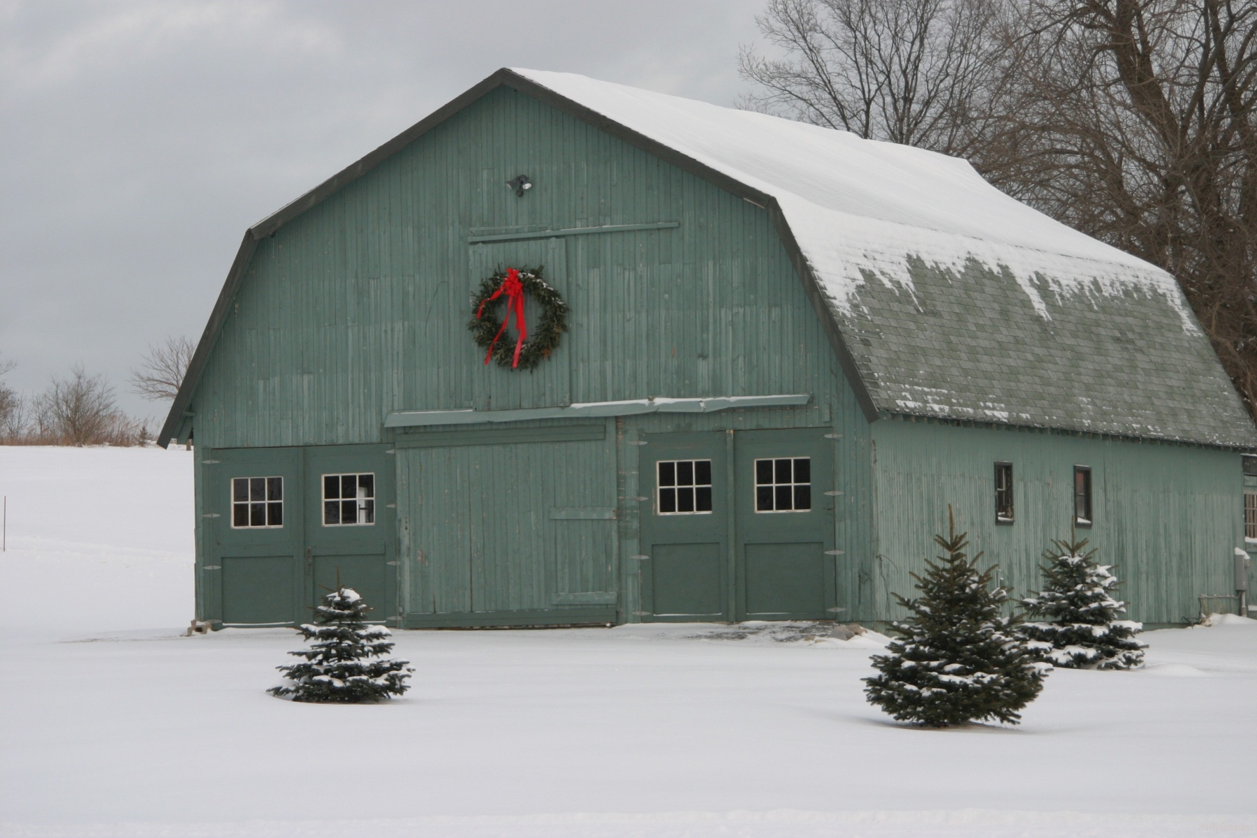 Snowy Green barn