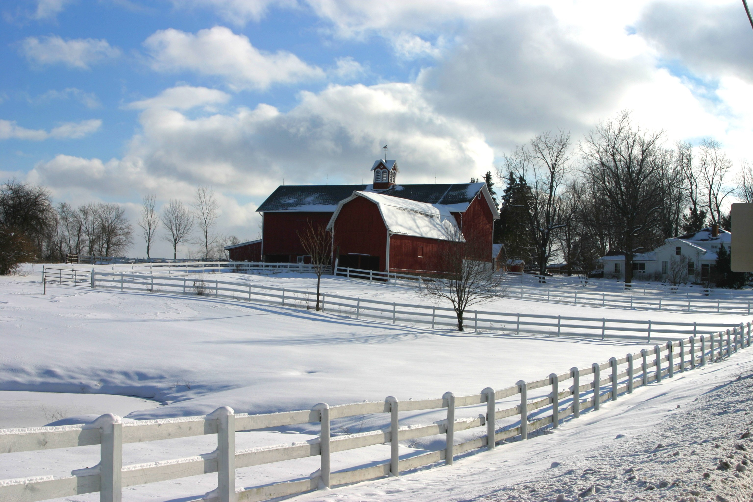 Snowy barn in Rush, NY