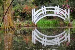 Japanese bridge at Magnolia Plantation