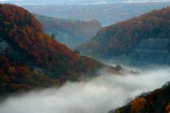 Foggy gorge