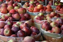 Apples at Market