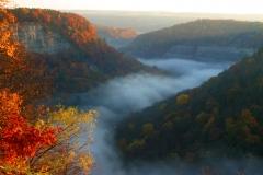 Autumn gorge in fog