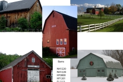 For Barn Lovers