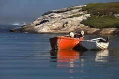 Dorries in Peggy's Cove